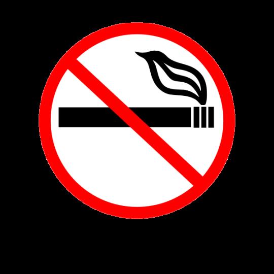 600px-no_smoking_sign_svg